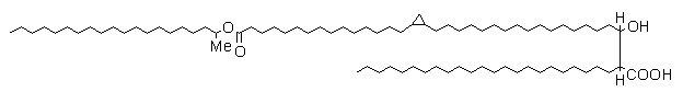 mycolic acid