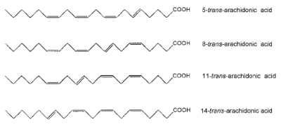 trans-arachidonic acid