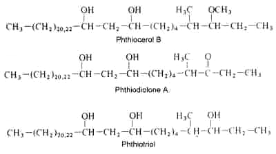 phthiocerol, phthiodiolone, phthiotriol