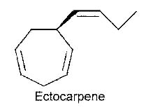 ectocarpene