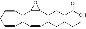 epoxyeicosatrienoic