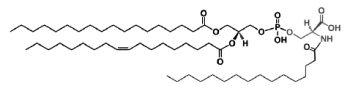 N-Acylphosphatidylserine