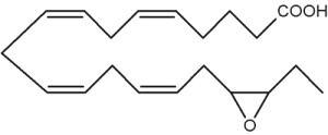 epoxyeicosaquatraenoic