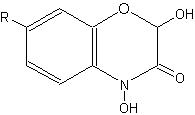 benzoxazinones