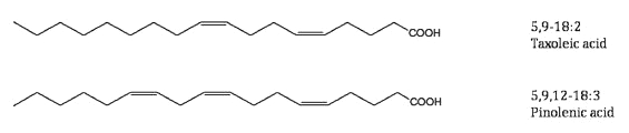 pinoleic and taxoleic acids