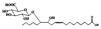 fatty acid glucuronide