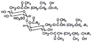 acyl trehalose