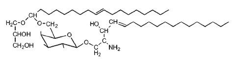 glyceroplasmalopsychosine