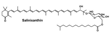 salinixanthin