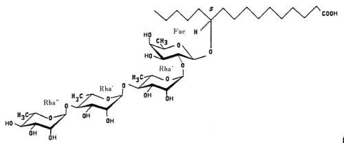 operculinic acid