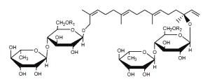 Hydroxygeranyllinallol diterpenoid glycoside